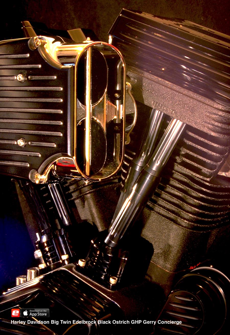 Edelbrock Big Twin 2001 Schwarz BlackOstrich Gerry Berlin BigTwin