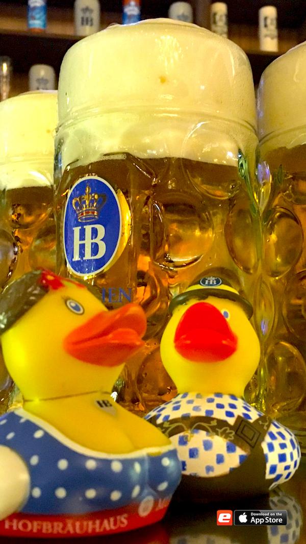 2016 2308 Hofbräu Berlin Enten Entchen Badeenten merchandise Gerry Concierge