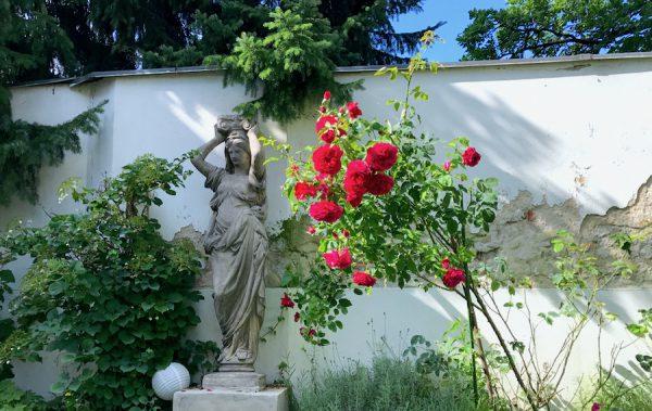 Rosengarten Blumen PLACCES SOEHT 7 Ateliers ehemalig Frauengefängnis Lichterfelde Sommerfest Betreiber neu Event Location